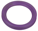 "BLUCHER Stainless Steel 2"" FPM Sealing Ring Purple (High Temperature Applications)"